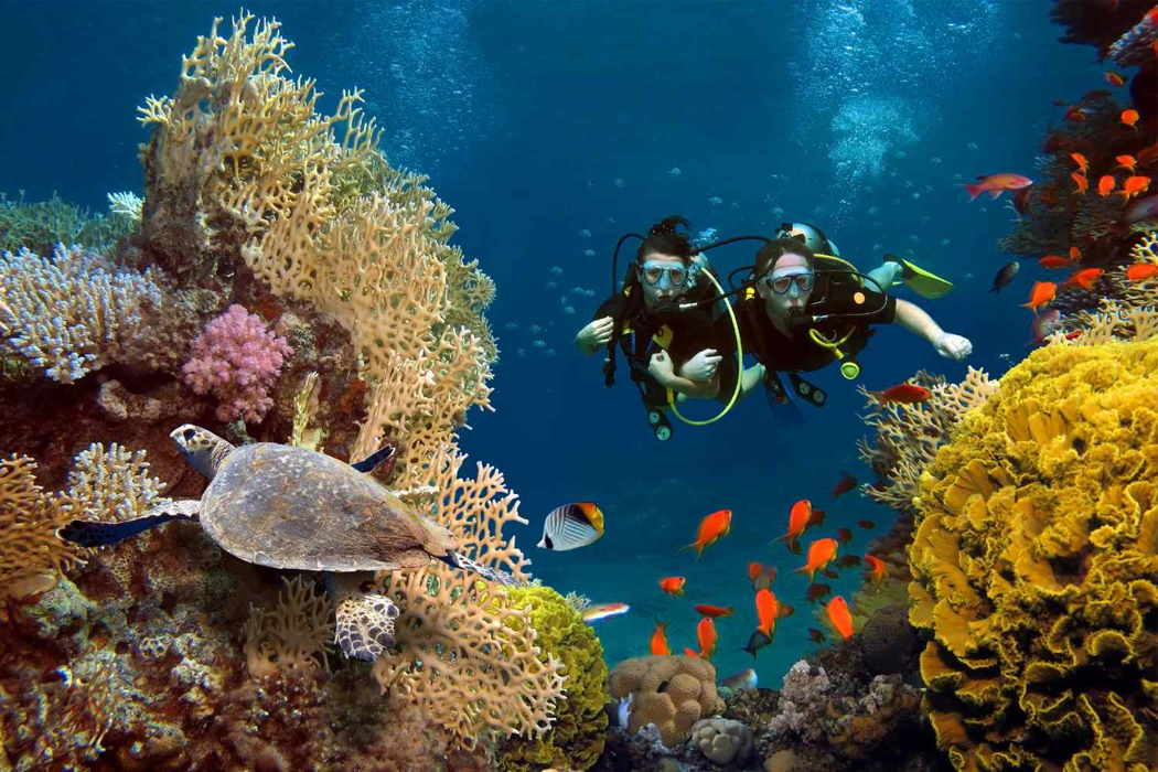 How to Train for Scuba Diving? - camplogy